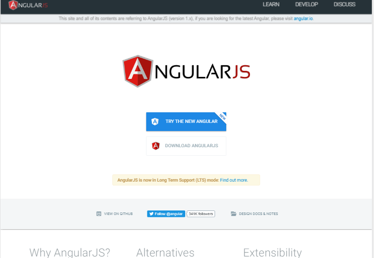 Angular JS Development